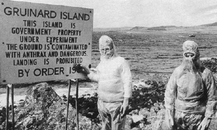 остров Грюнард