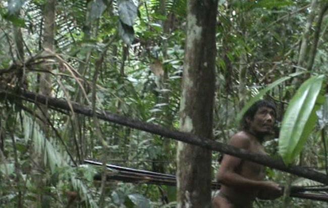Неизвестный амазонский индеец