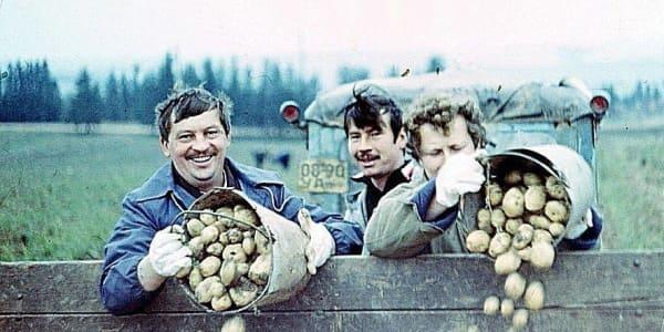 Картошка в СССР