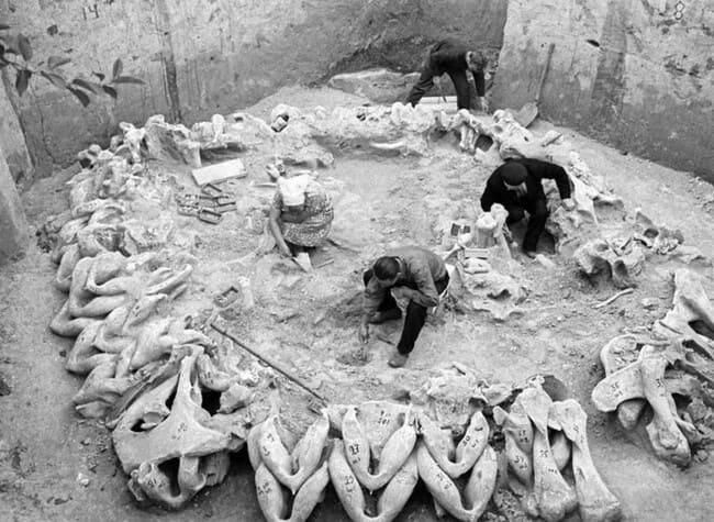 Остатки древнейшего известного поселения