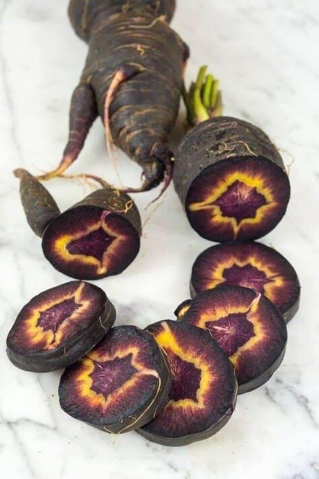 вид черной турецкой моркови