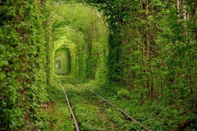 Туннель Любви - Клевень, Украина