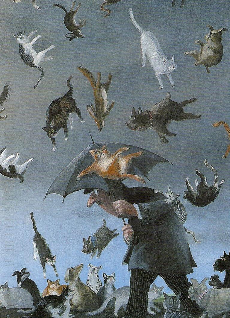 Дождь из кошек и собак