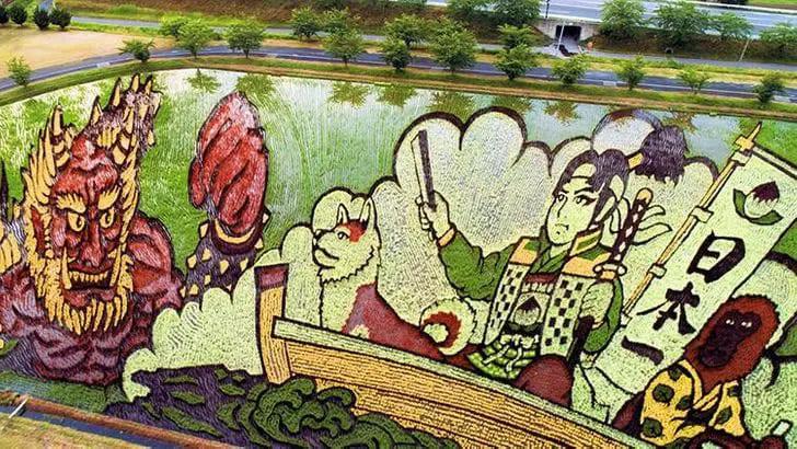 хобби японских фермеров — рисовые картины на полях