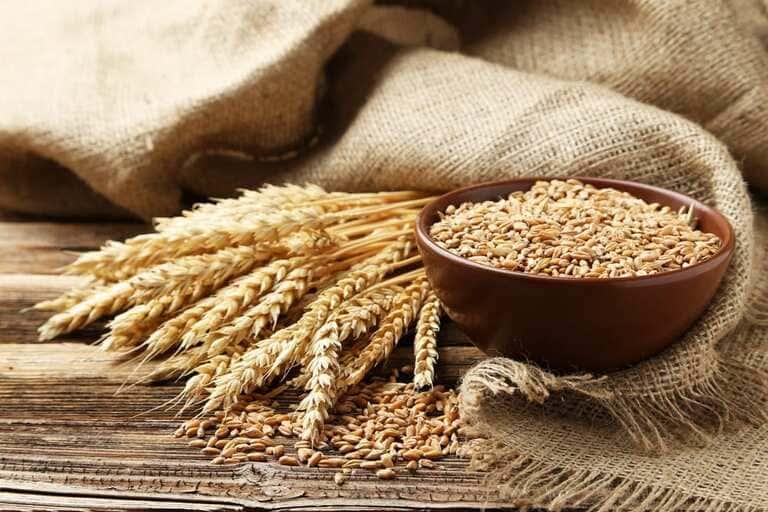 7. Пшеница