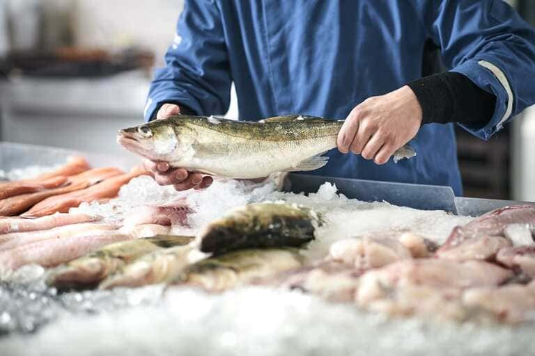 8. Рыба