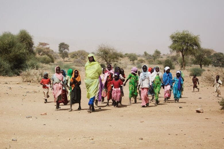 Гуманитарные вопросы