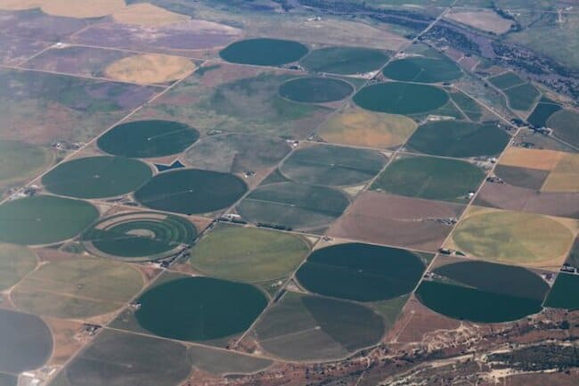 Посевные поля в США