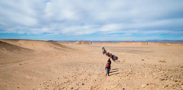 Лишь четверть пустыни Сахара песчаная