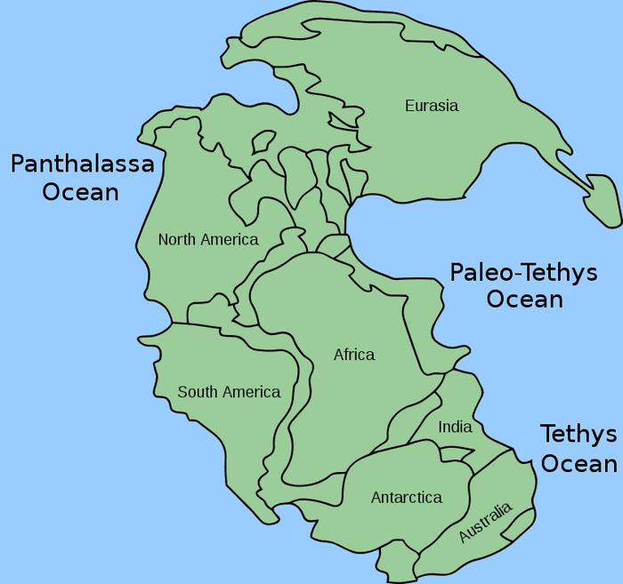Пангея в окружении Панталассы
