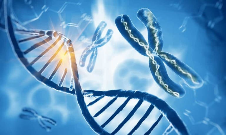 Повреждение ДНК