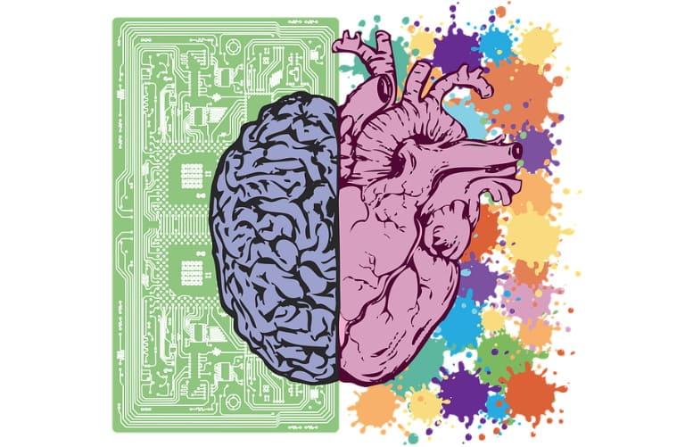 20+ интересных фактов о человеческом мозге