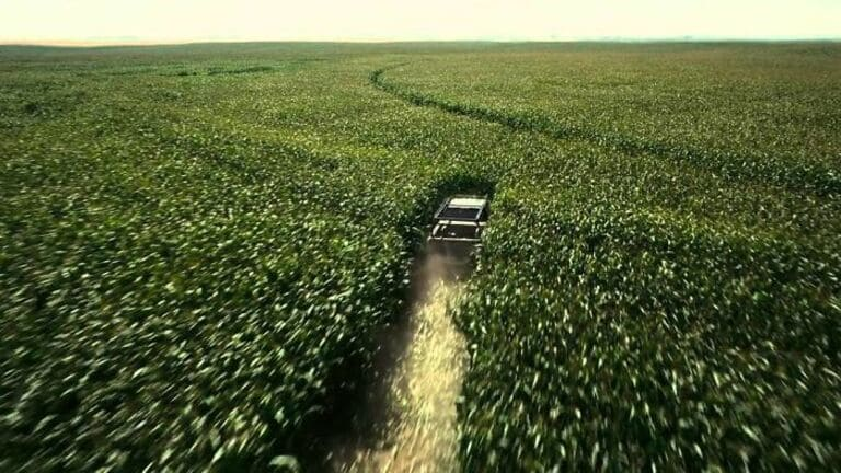 500 акров кукурузы