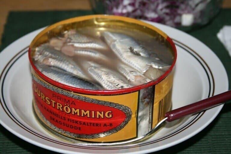 едят тухлую рыбу