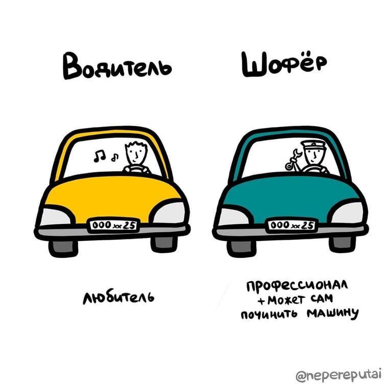 12. Чем водитель отличается от шофёра?