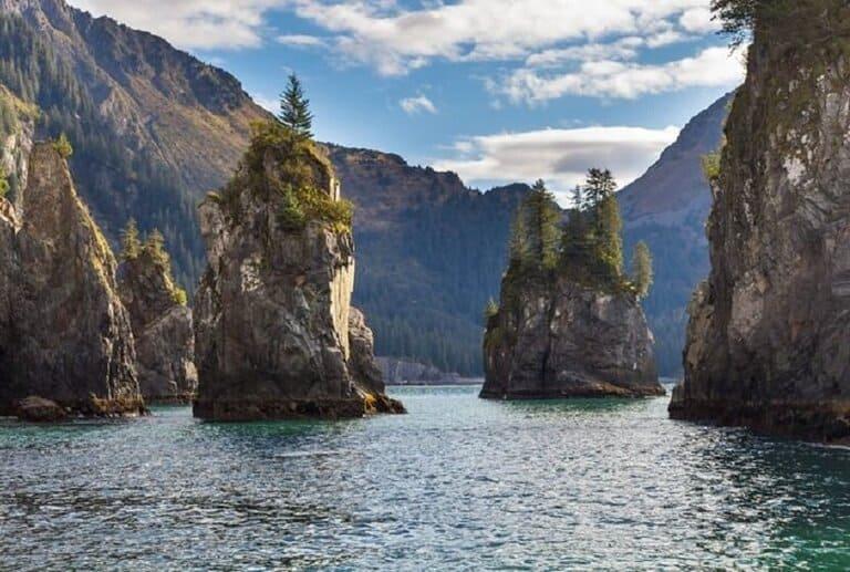 Alaska: Kenai Fjords Wildlife Cruise