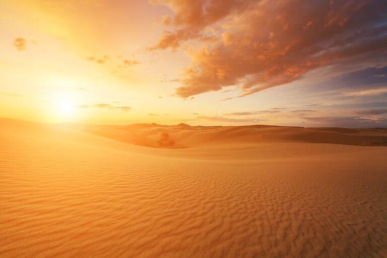 Пустыня Гоби, Монголия.