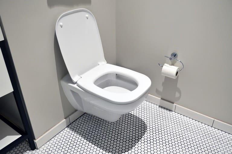 Эффект Кориолиса не распространяется на туалеты