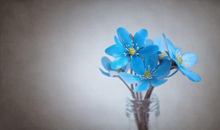ваза с водой