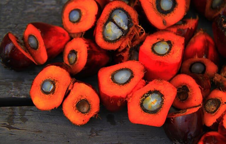 Что такое пальмовое масло: факты и исследования