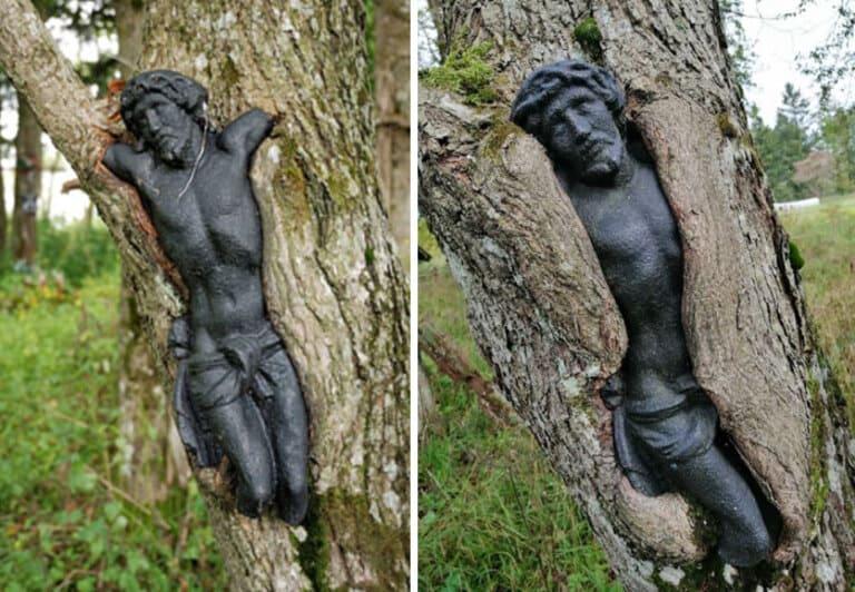 Фотографии с заброшенного кладбища в Польше