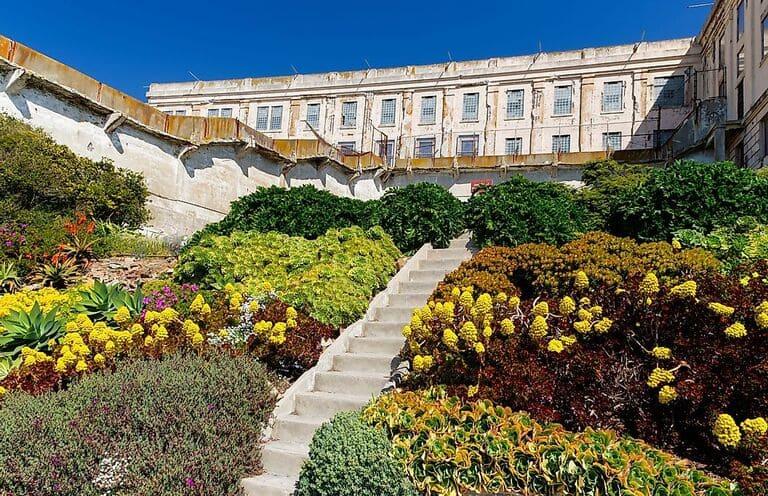 Красивые сады на острове Алькатрас