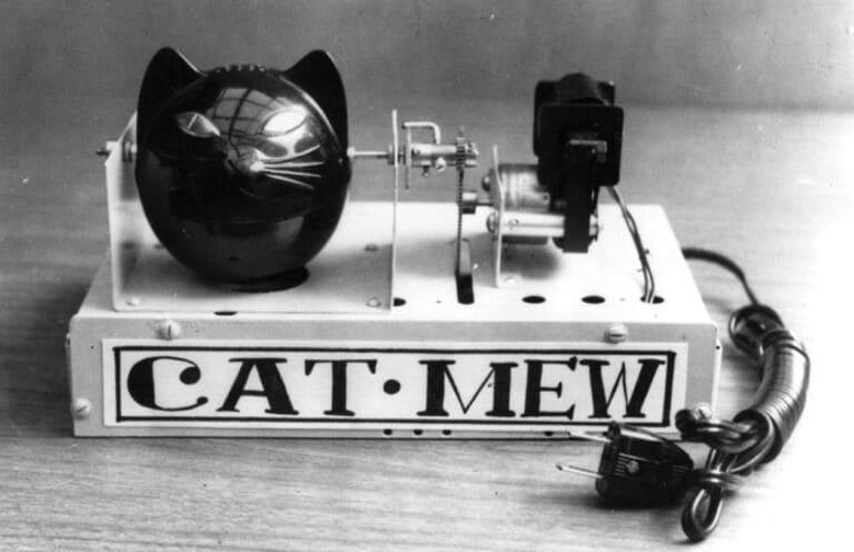 Мяу-машина