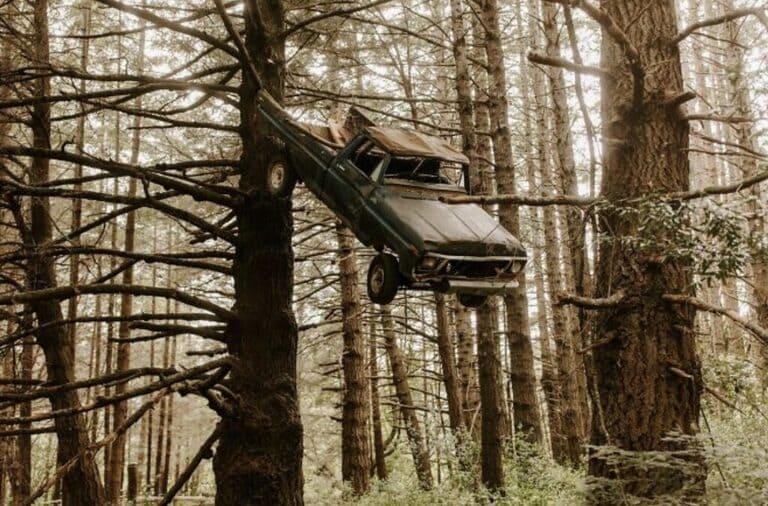 грузовик на дереве