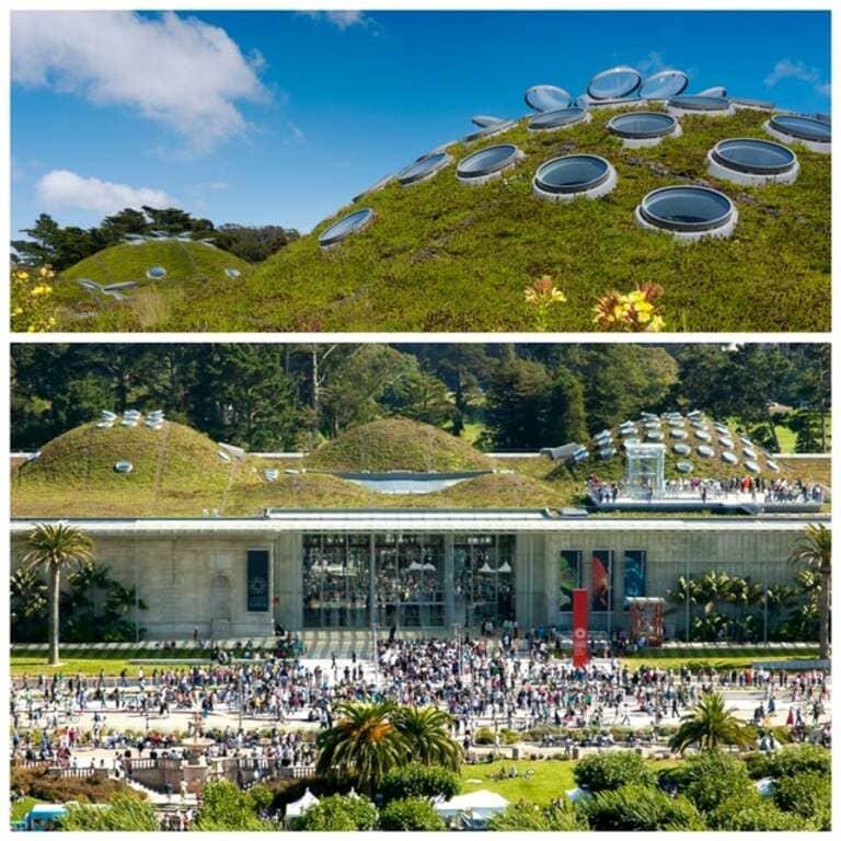 крыша Калифорнийской академии наук