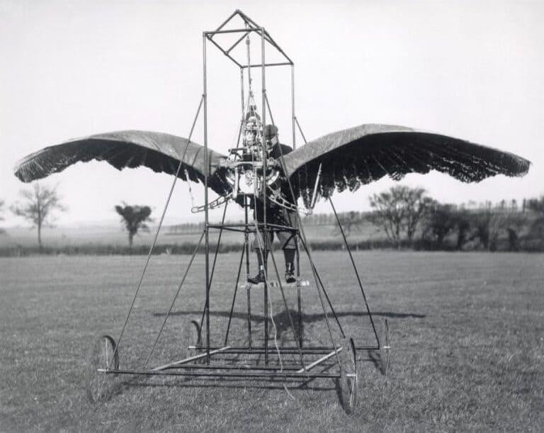 Орнитоптер