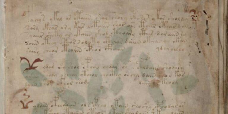 Страница из рукописи Войнича