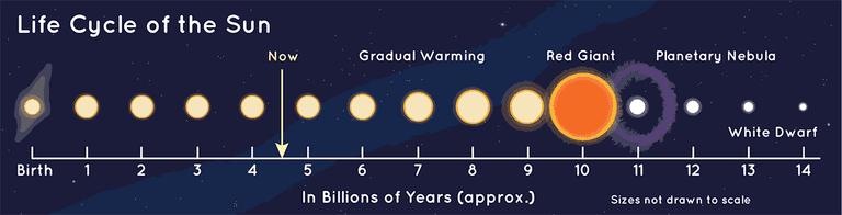 Наше Солнце находится в середине своего жизненного цикла